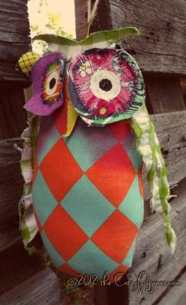 Owl 7